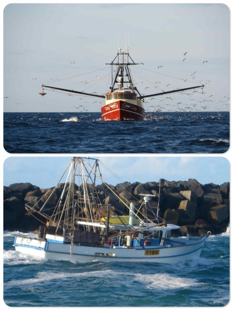 Examples of fishing trawlers