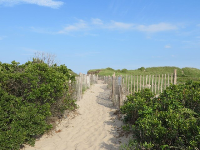 Block Island dunes - definitely worth restoring and preserving