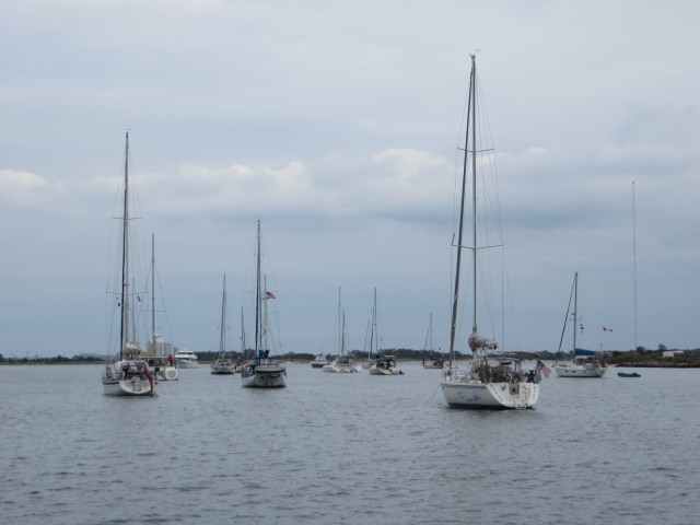 Sailboats anchored in Cape May harbor, all on their way south