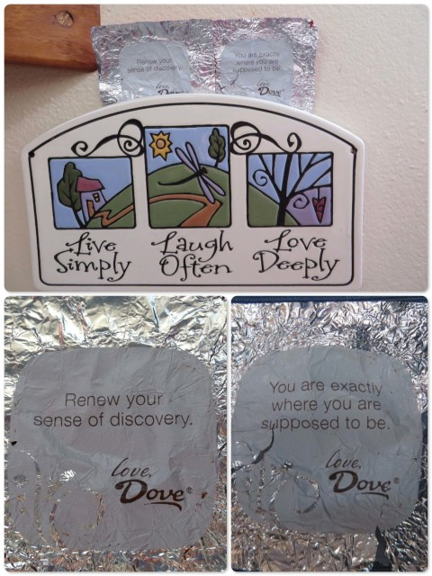 Dove chocolate wrapped in timely messages. Now hanging in the galley.