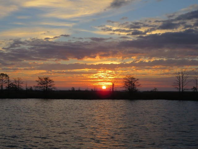 The bold orange appears above the marsh shoreline of the creek.