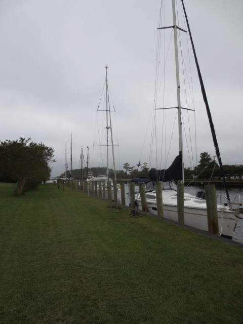 Sailboats tied along Great Bridge dock