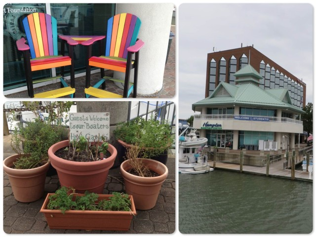 ~Colorful chairs outside the marina office ~ view of the dockmaster's building ~Boater's herb garden