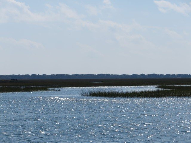 Marshes along the ICW