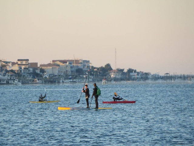 Volunteers on paddleboards and kayaks are spread out along the swimming course