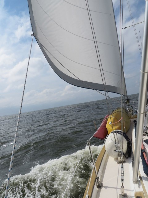 Sailing down the Pamlico River