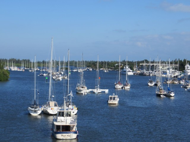Thanksgiving morning (50 degrees out but sunny) Looking out over the Vero Beach mooring field