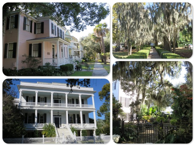Historic homes, Spanish moss hanging on the trees