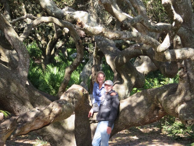 The trees are incredible! Twisting limbs that reach out and ask to be climbed.