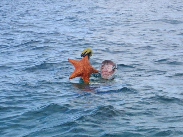 Al finds a very big starfish to show to me before he returns it to the bottom.