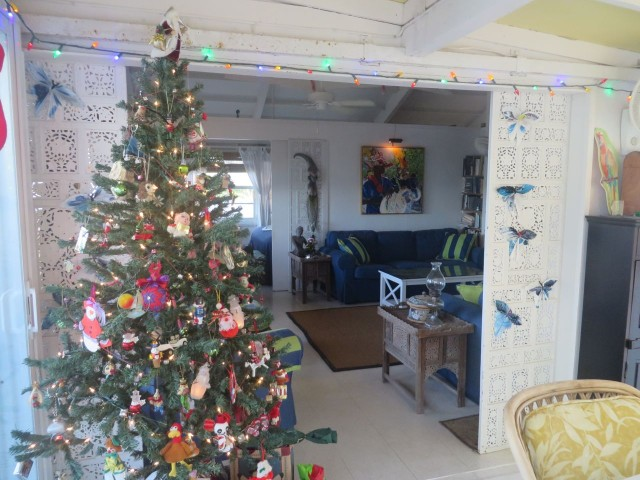 Sea House shines with Christmas spirit!