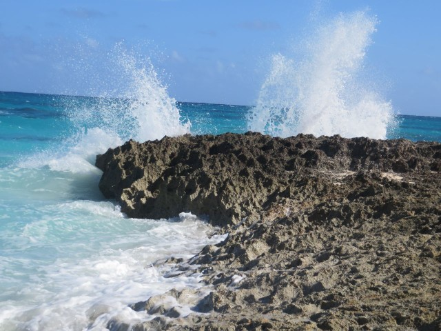 The surf was a great show as it roared up against the reef rock.