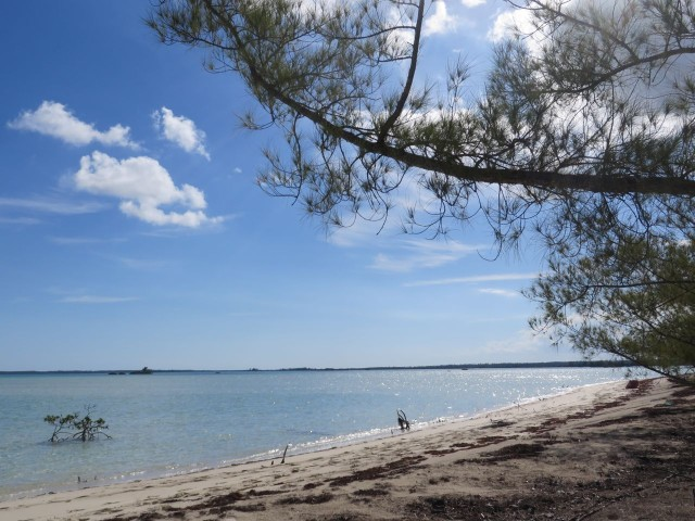 A very nice little beach