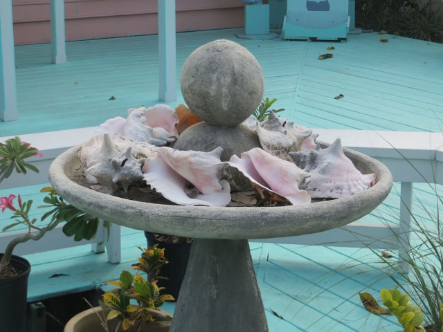 A fountain filled with conch shells in Marsh Harbor