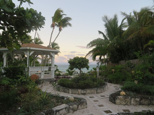 A lovely garden overlooking the ocean in the early evening.