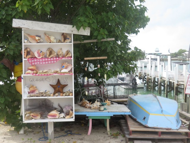 Grandpa's shells for sale on Man-O-War. We want to find our own - that's have the fun and challenge!