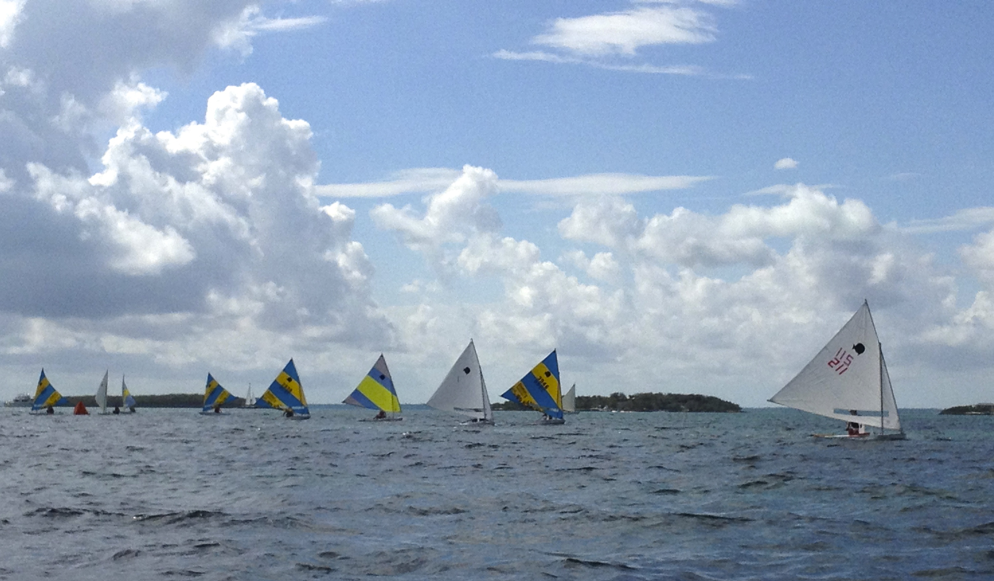 Colorful sails marked  the sunfish competitors