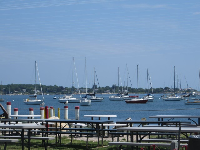 We enjoyed the view form our picnic table, overlooking the Mystic River.