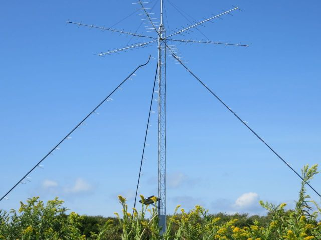 The tracking antennae