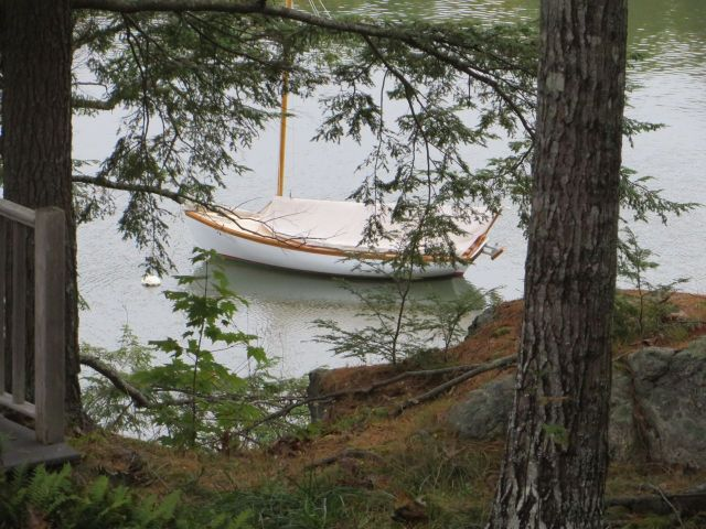 Peter and Laurie's little sailboat at rest near their dock as seen through the trees from above.
