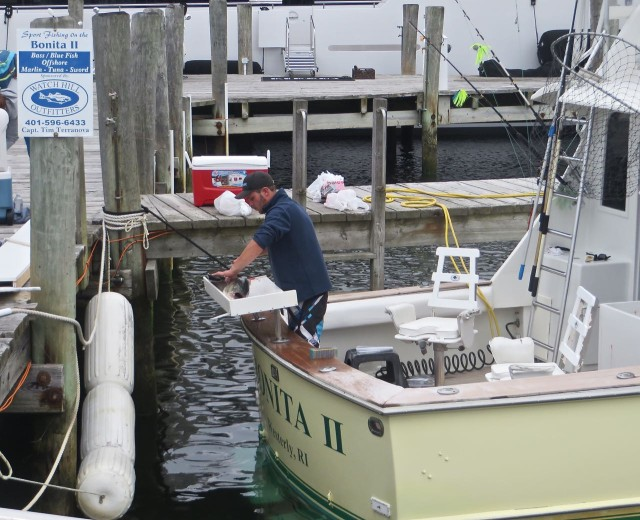 """Bonita"" the charter fishing boat was back at the dock with a catch."
