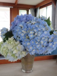 A bouquet of homegrown hydrangeas add color and cheer to the boat's salon.