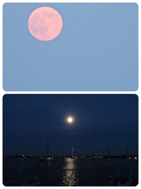 The full moon was an extra treat during this week.