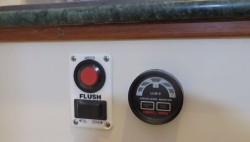 Push button flush??? That's an upgrade from the old pump toilets.