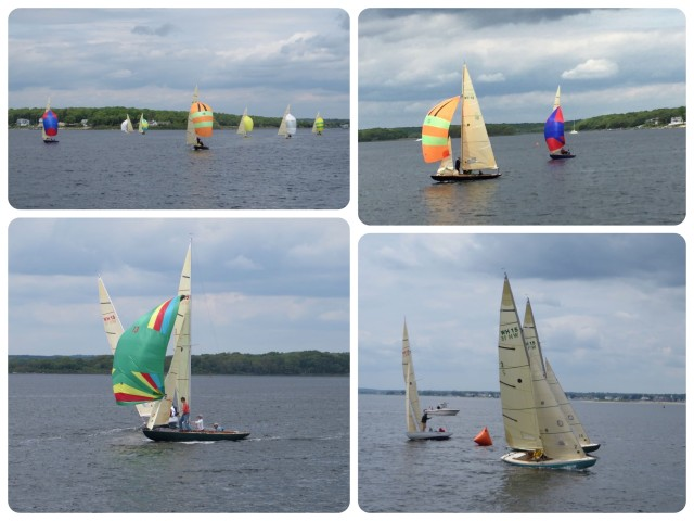 We never tire of watching the sailboat races.