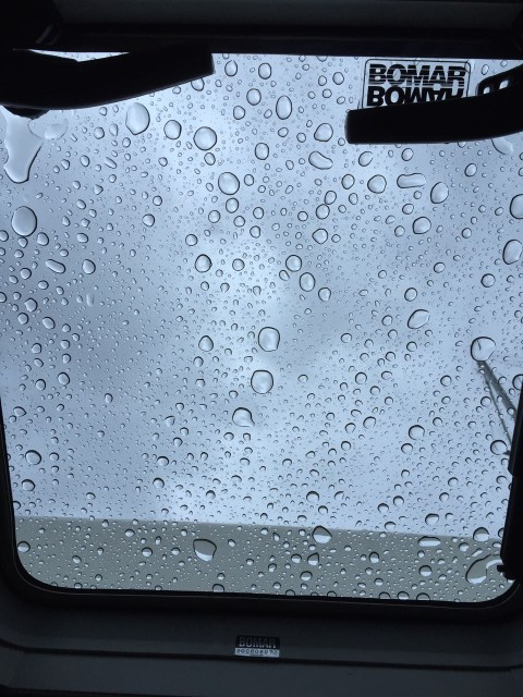 Our view above our heads while we nap - lots of rain drops!