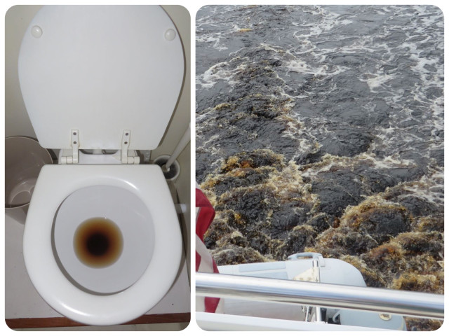 THIS IS NOT WHAT YOU THINK!!! The tannin in the water colors the water int he toilet. You can see the brown color in our wake as well. Just another part of the whole experience. ;-)