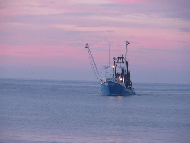 Fishing dragger boat coming back in with a night catch.