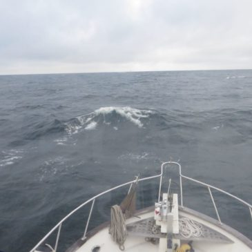 Down the Sound!