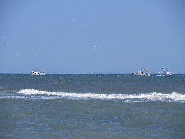 As we sat on the beach, on a very windy afternoon, we watched draggers trawling for fish back and forth.