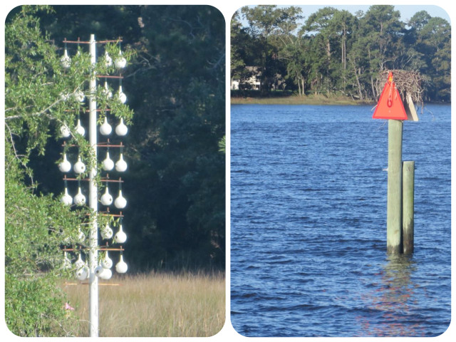 HGTV for birds: Left pic is condo living on the waterfront Right pic is single home, country style surrounded by water