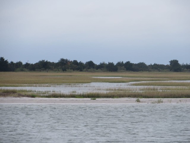 Marsh lands of North Carolina, along the ICW