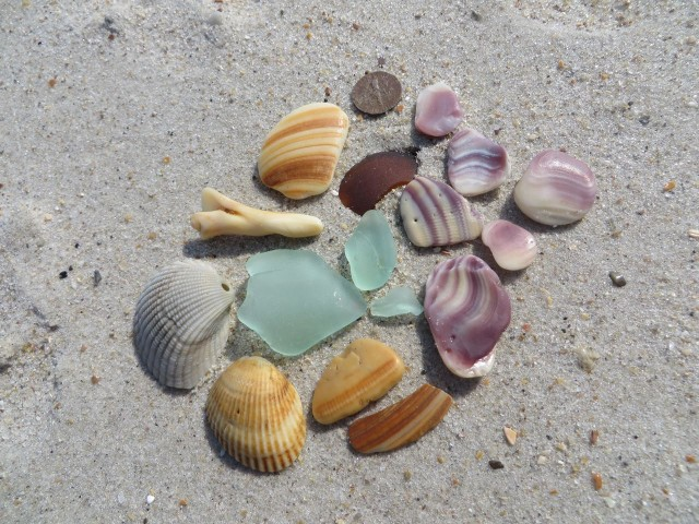 A beach combing success! Our first sea glass on this trip. And they are nice pieces, too.