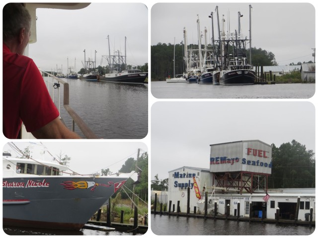 The semi-interesting photos of the whole day were of RE Mayo Seafood Company. Nice shrimp boats!