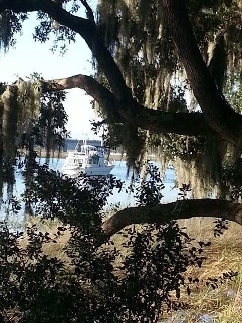 Kindred Spirit departing Savannah. I love this photo! Thank you, Lynn.