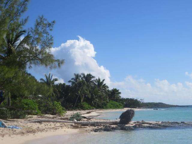 Tahiti Beach 10