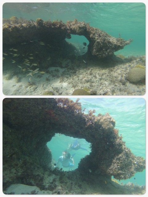"Dan had an underwater ""go pro"" camera and took a few photos of this coral arch near Johnny's Cay."