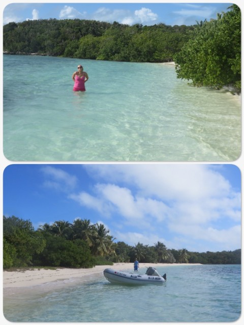 There were no sharks in this shallow cove so we enjoyed the water after all.