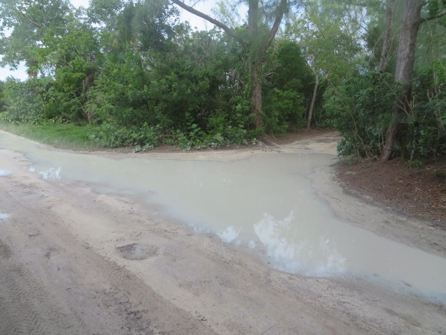 Proof that we have been experiencing some rains here in the Bahamas..... Quite a puddle in this road. And yes, that is a road.