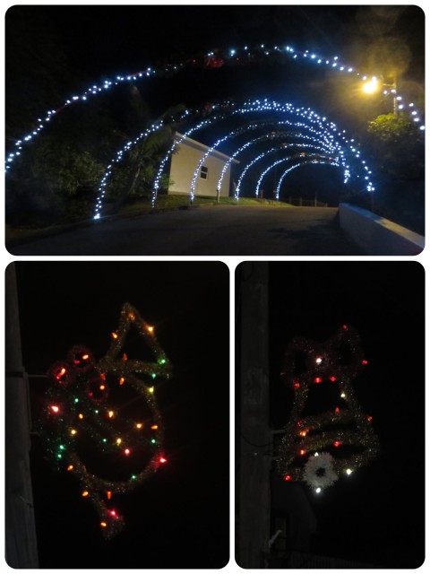 "The town of New Plymouth also gets decked out for the holidays. Lighted arrangement on every pole and a wonderful festive ""tunnel"" that we passed through on our way into town."