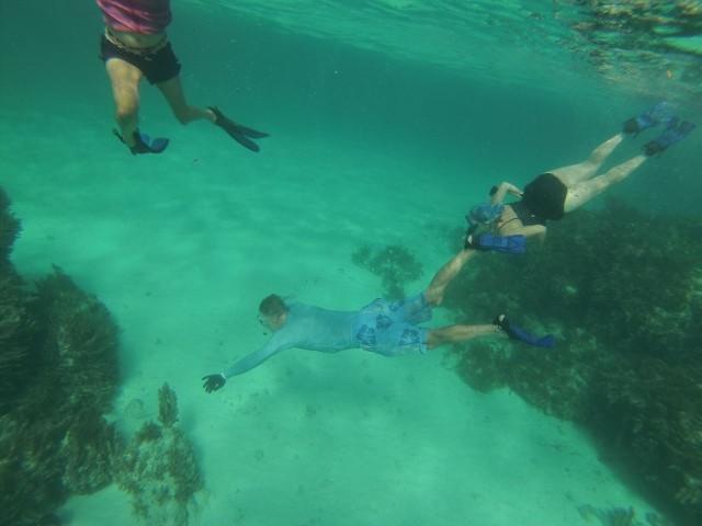 Al and me, swimming around (Marcia's legs also.)