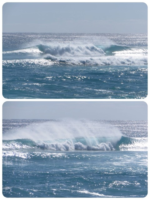 The wind was so strong the tops of the waves were getting blown off. They remind me of horses with their manes blowing back.