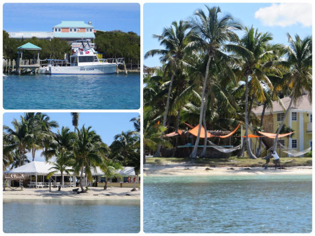 Dive Guana, home of Troy who frequently gives weather reports for the Cruisers Net in the morning. WE beached the dinghies in front of Grabbers, a beach bar. Who can resist hammocks? Every beach should have one or ten.