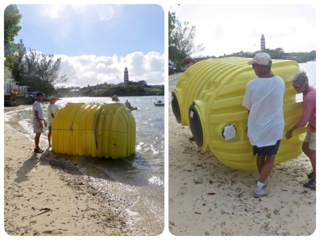 From sea to land. I wonder how many septic tanks have had an adventure like this?