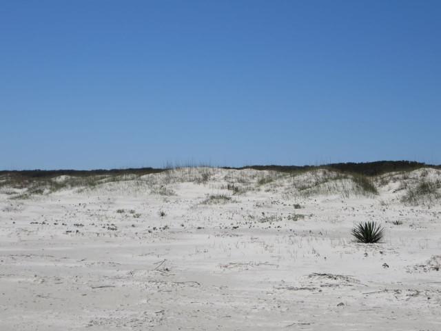 10 beach