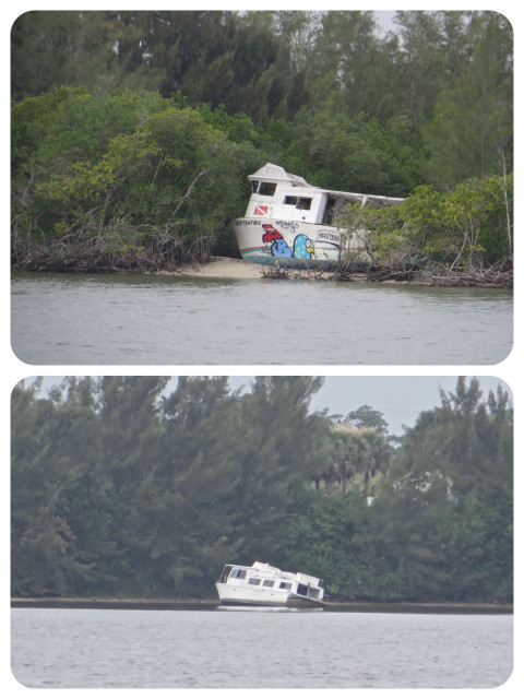Two abandoned boats onto side of the ICW. This was just the beginning of many sightings.